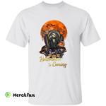 The Nightmare Before Christmas Jack Skellington Pumpkin Halloween Is Coming Horror Movie Character T-Shirt