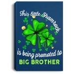 This Little Shamrock is Being Promoted to Big Brother Lucky Portrait Canvas