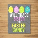 Will Trade Sister For Easter Candy Bunny Easter Eggs Fleece Blanket