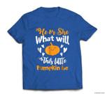Gender Reveal Pregnancy Halloween Pumpkin T-shirt