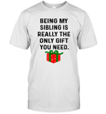 Being My Sibling Is Really The Only Gift You Need The Box Shirt
