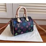 Mini Hl Speedy Black Multicolor Monogram Bag M61252