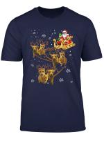 Christmas Reindeer Dachshund Dog Funny Christmas Dog Lover T Shirt