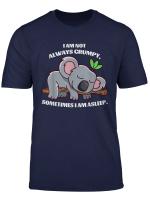 I Am Not Always Grumpy Sometimes I Am Asleep Funny Koala T Shirt