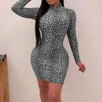 Sexy Turtleneck Long Sleeve Leopard Print Dress