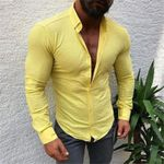 Casual Long Sleeved Solid shirt Slim Fit