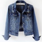 long-sleeved short paragraph slim single breasted jeans coat
