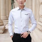 Long Sleeve Business Affairs Leisure Dress Shirts