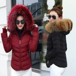 Parkas for Coat Fashion With a Hood Coat Outwear Jackets