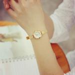 Famous Brand Minimalist Steel Mesh Simple Geneva Watches