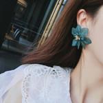 Bohemian Acrylic Matte Petal Accessories