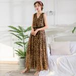 Leopard Print V Neck Bohemian Chiffon Long Plus Size