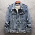 New Casual Frayed Hole Animal Embroidery Denim Jackets