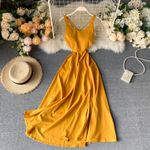 Beach Style Solid Sexy Backless V Neck Dress