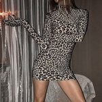 Leopard Print With Gloves Long Sleeve Mini Dresses