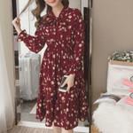 Chiffon Elegant Ladies Vintage Long Dress