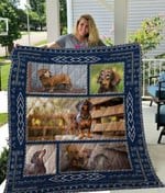 Theartsyhomes Dachshund Qui12002 3D Personalized Customized Quilt Blanket ESR14