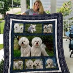 Theartsyhomes Bichon Frise Qui3002 3D Personalized Customized Quilt Blanket ESR16