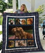 Theartsyhomes Dachshund Qui12001 3D Personalized Customized Quilt Blanket ESR13