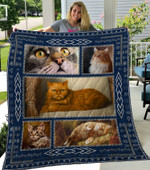 Theartsyhomes Cat 8 3D Personalized Customized Quilt Blanket ESR25