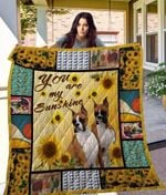 Theartsyhomes Boxer Qui7012 3D Personalized Customized Quilt Blanket ESR19