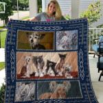 Theartsyhomes Chinese Crested Dog Qui52002 3D Personalized Customized Quilt Blanket ESR21