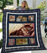 Theartsyhomes Cat 6 3D Personalized Customized Quilt Blanket ESR22