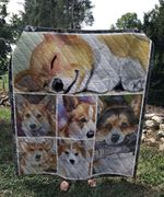 Theartsyhomes Corgi go to bed 3D Personalized Customized Quilt Blanket ESR38