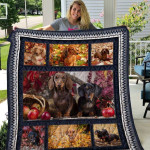 Theartsyhomes Dachshund Qui12008 3D Personalized Customized Quilt Blanket ESR21