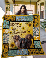 Theartsyhomes Dachshund 11 3D Personalized Customized Quilt Blanket ESR19