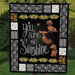 Theartsyhomes Dachshund 3D Personalized Customized Quilt Blanket ESR7