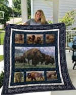 Theartsyhomes BISON 3 3D Personalized Customized Quilt Blanket ESR35