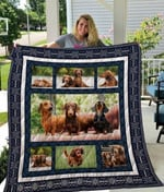 Theartsyhomes Dachshund Qui12005 3D Personalized Customized Quilt Blanket ESR18