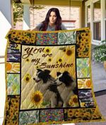 Theartsyhomes Border Collie Qui17008 3D Personalized Customized Quilt Blanket ESR43