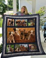 Theartsyhomes Boxer 8 3D Personalized Customized Quilt Blanket ESR4