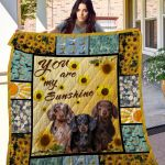 Theartsyhomes Dachshund Qui12010 3D Personalized Customized Quilt Blanket ESR25
