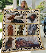 Theartsyhomes Dachshund 1 3D Personalized Customized Quilt Blanket ESR17