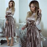 Belted Pleated Robe  Long Sleeve Vintage Dress