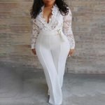 Long Sleeve Skinny  Elegant V Neck Lace Jumpsuit