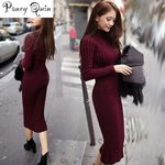 Knitted long Slim Elastic Turtleneck Sexy Long Sleeve Dress