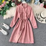 Vintage Lantern Sleeves Romantic Long Shirt Dress