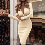 Sexy Deep V-Neck Party Wrap Office Dress