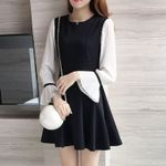 Patchwork Flare Sleeve Long Sleeve Office Dress