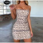 Leopard Printed Sheer Ruched Mesh Sexy Slim Tight Bodycon Dress