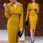 Long Sleeve Elegant V Neck Office Dress