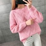 Pullovers  Warm  Knitted Fashion Embroidery Sweater