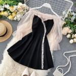 Slash Neck Elegant Mesh Sexy Dress