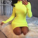 long sleeve slim turtleneck sexy mini bodycon dress