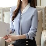 Vintage Long Sleeve Chiffon  Elegant Blouse