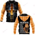Jesus is my God my everything ALL OVER PRINTED SHIRTS PLAID HOODIE